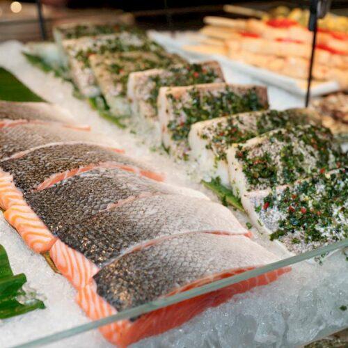 Navigating Seafood Sustainability