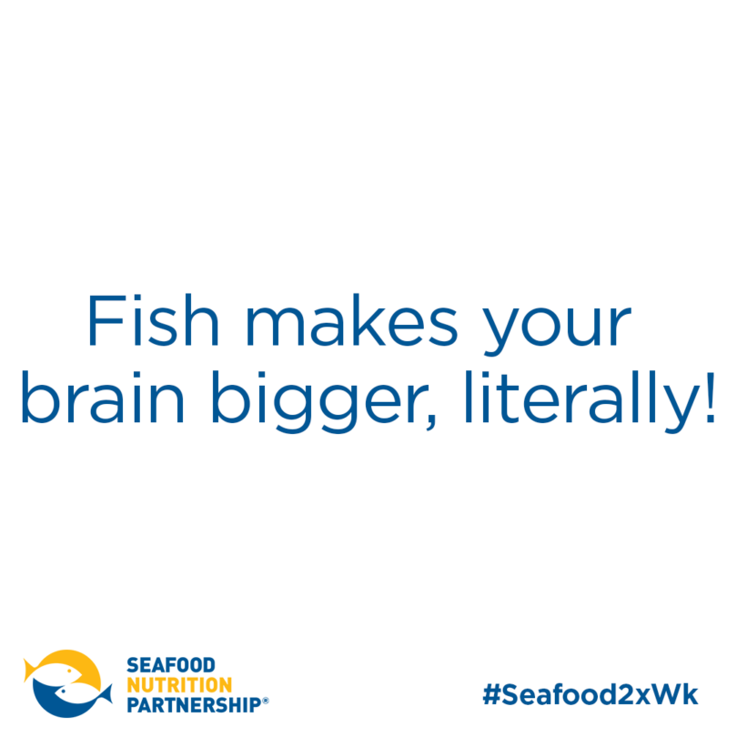 Seafood for Kids: Big Brains