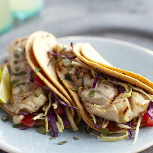 Support Your Immune Health by Eating a Variety of Seafood