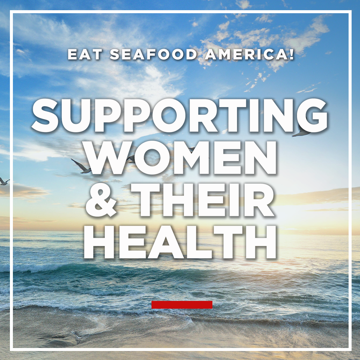Supporting Women & their Health graphic