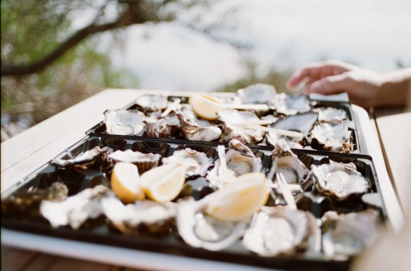 The World Is an Oyster! Learn All About Oyster Benefits